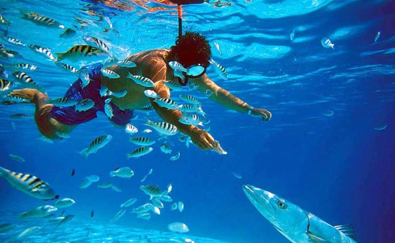 Snorkelling   adventures by WanderTrust