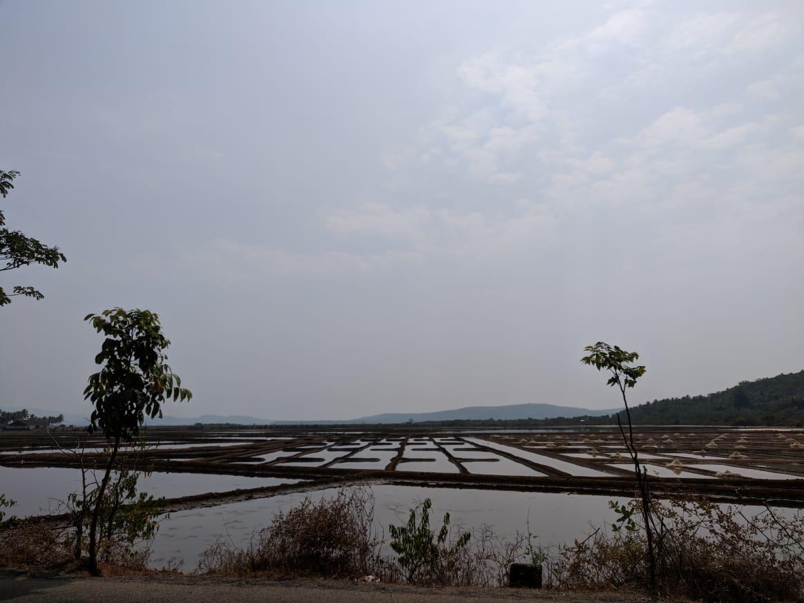 WanderTrust | Surprise Trip | Gokarna